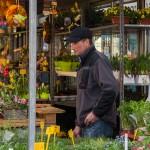 Der Blumenhändler hat frische Kräuter im Angebot.