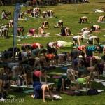 yogaconvention1-27