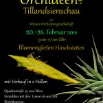 Internationale Orchideen- und Tillandsienschau