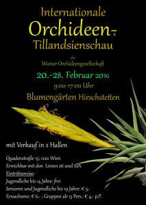 Internationale Orchideen- und Tillandsienschau