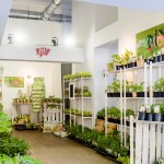 Ja Natürlich Garten Pop Up Store