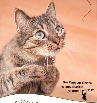 Leitfaden zum Katzenglück