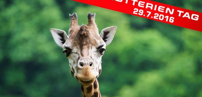 Lotterien Tag Tiergarten Schönbrunn 2016 - Fotocredits © Daniel Zupanc