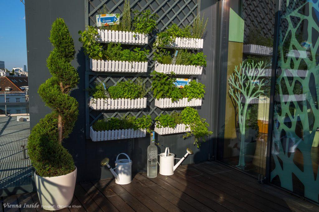 """Getreu dem Motto  """"Be Natural"""" findet sich auf der Terrasse ein wahrer Kräutergarten."""