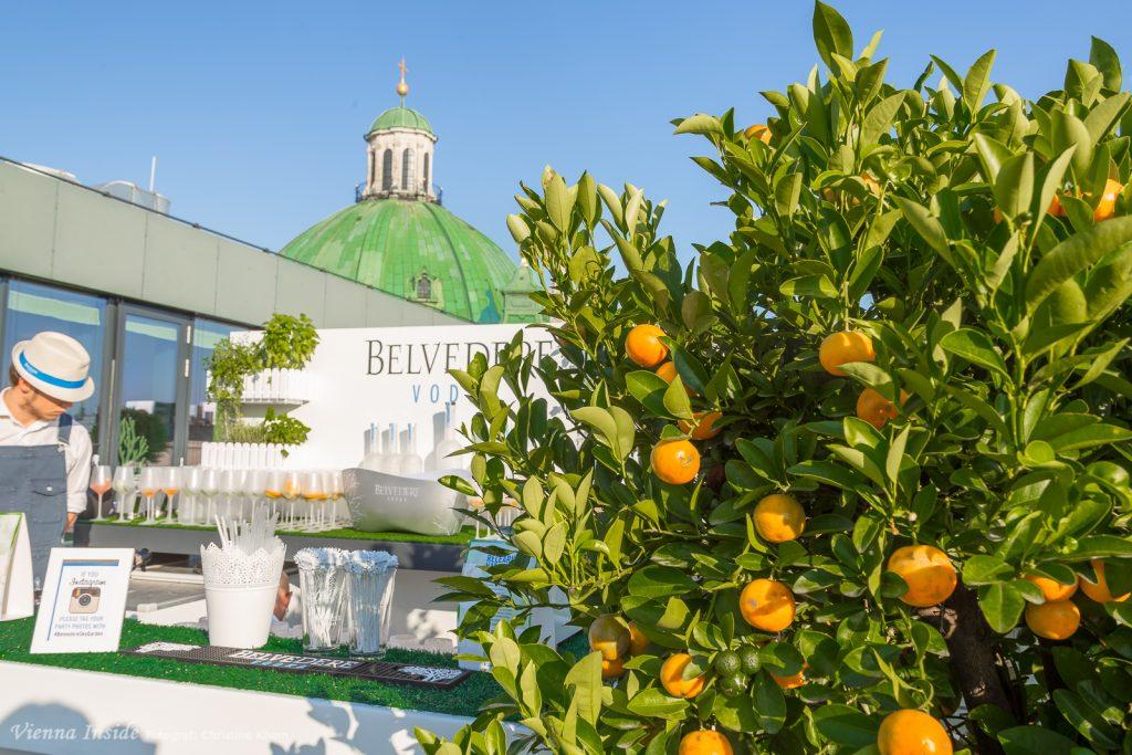 Und zwar zur Belvedere Sky Garden-Bar.