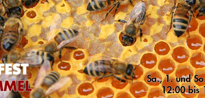 Bienenfest am Himmel 2016