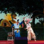 Im Unterschied zu anderen Formen des Musikdramas (in Europa, Indien oder Japan) vereint die Chinesische Oper Ausdrucksformen von Musik, Gesang, Schauspiel, Tanz und Akrobatik in lokaltypischen Ausformungen.