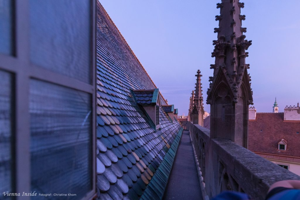 Mit den letzten Strahlen der untergehenden Sonne treten wir aus dem Stiegenhaus hinaus auf das Dach.