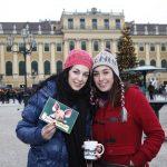 Neujahrsmarkt Schloss Schönbrunn FOTO GERHARD FALLY