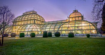 Palmenhaus Schönbrunn © Fotografin Christine Khom