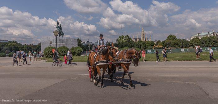 Wohin in Wien – Veranstaltungstipps 27.07. – 02.08.2017